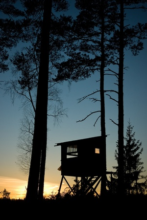 A small hut used for moose hunting in a Swedish forest.