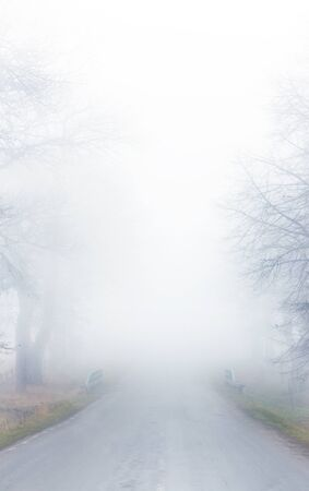 Street in thick fog Stock Photo - 8304999