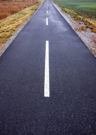 Narrow asphalt road with diminishing perspective Stock Photo - 8305165