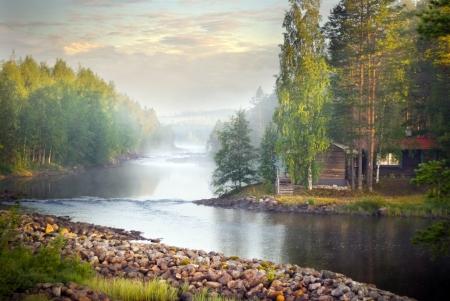 woods lake: Nebbia su un fiume di primo mattino