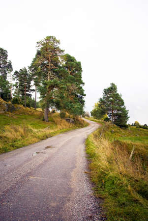Winding country road on a cloudy day Stock Photo - 8311725