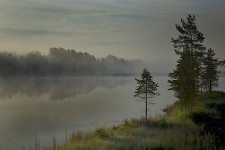 Morning mist over a river in Halsingland, Sweden. photo