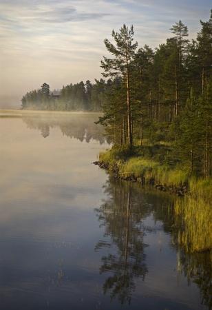 scandinavian peninsula: Morning mist over a river in Halsingland, Sweden. Stock Photo