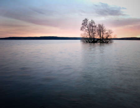 Small island with trees Stock Photo - 8501599