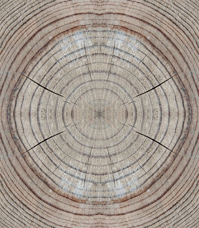 Abstract wooden bakground made from cros section of tree Stock Photo