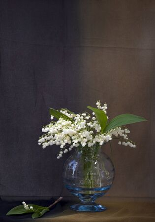 Still life with lily-of-the-valley flowers in a vase Stock Photo - 9658131