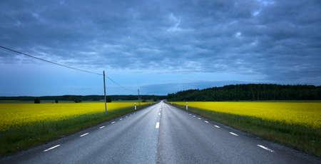rape: Empty asphalt road at night, crossing a rape field Stock Photo