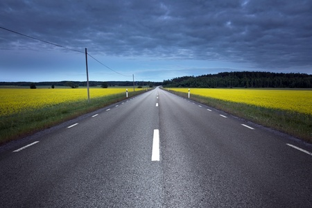 rural road: Empty asphalt road at night, crossing a rape field Stock Photo