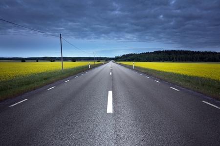 Empty asphalt road at night, crossing a rape field Stock Photo
