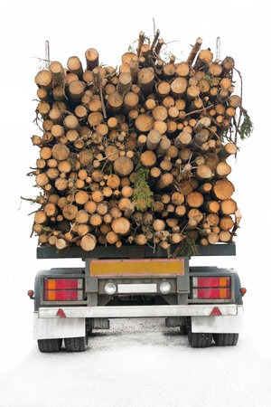 Back of truck loaded with timber, isolatd on white photo