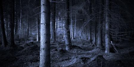 Spooky blauwe bos met droge bomen