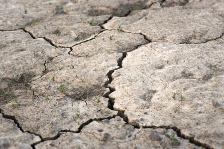 Close up of crack in soil photo