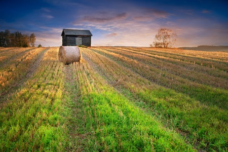 Rural landscape in evening with hay bale in focus in foreground and abandoned shed in background photo