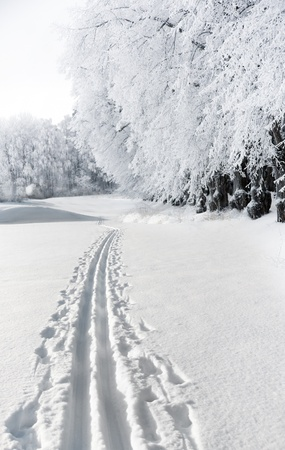 Cross country ski track in rural landscape photo