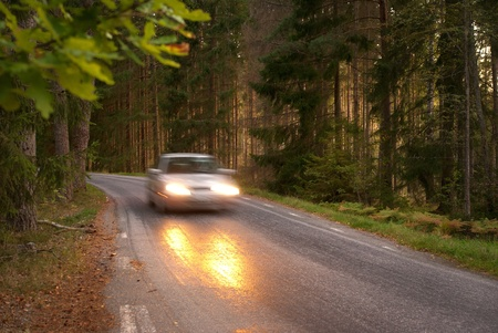 Car in blurred motion on wet road in forest area photo