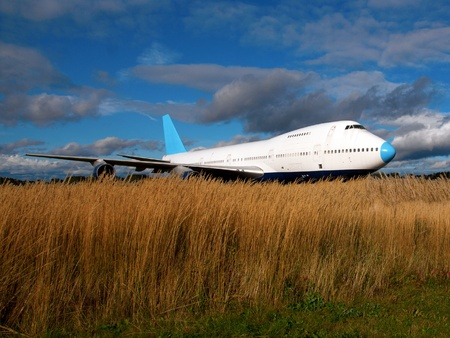 jumbo: Grounded jet plane with grass in foreground