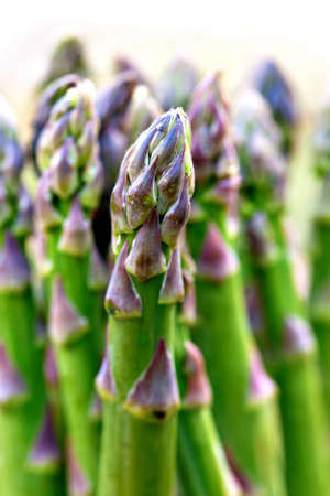 Close up of bunch of fresh asparagus photo
