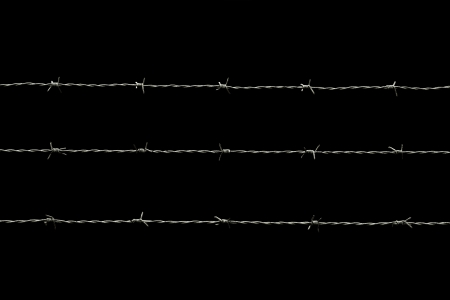 barb wire isolated: barbed wire isolated on black