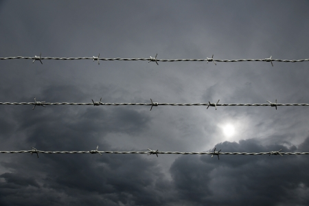 barbed wire on moody gray sky Stock Photo - 14217508
