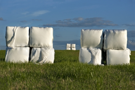 Hay bales wrapped in white plastic on field with blue sky photo