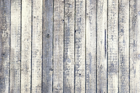 Background of weathered wood with peeling old white paint photo