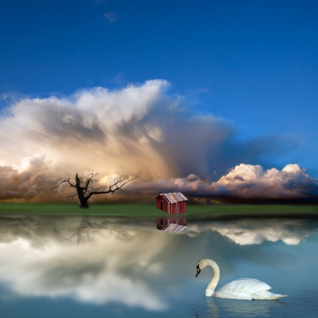 Peaceful fantasy landscape with, lake, blue sky, bare tree and swan photo