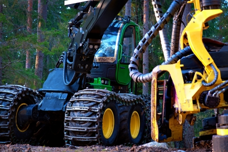 logging truck: Heavy machine used for deforestation in clearing
