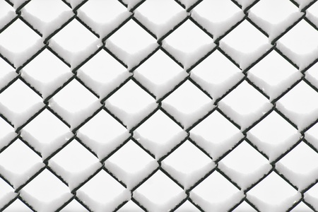 Green chainlink fence with snow on netrual background Stock Photo - 16651829