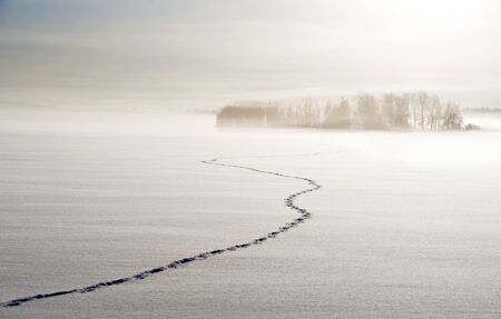 Footsteps on lake in winter, with small islands and trees in background photo