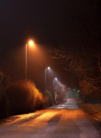 Rural street with street lights at night photo