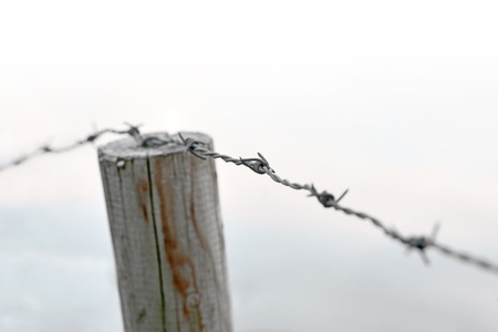 Close up of barbed wire on wooden fence photo