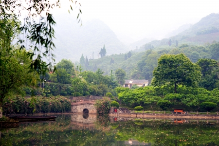 Beautiful chinese landscape with water, a bridge and hill withn tea plantation inn background photo