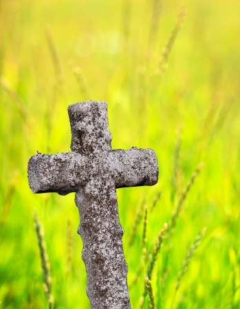cemetry: Ancient stone cross with green summer field in background
