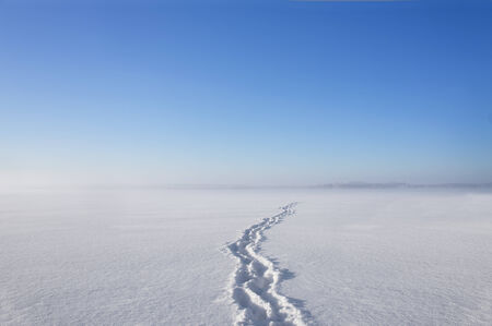 shoe prints in clean snow on lake, with blue sky and haze in background photo