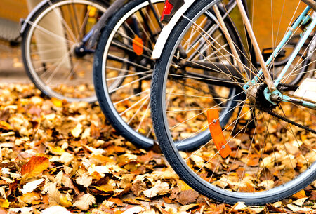 parked: Wheels of bicycles parked in autumn leaves Editorial
