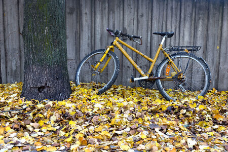 parked bicycles: Vintage yellow bike parked against concrete wall. Autumn leaves on ground.