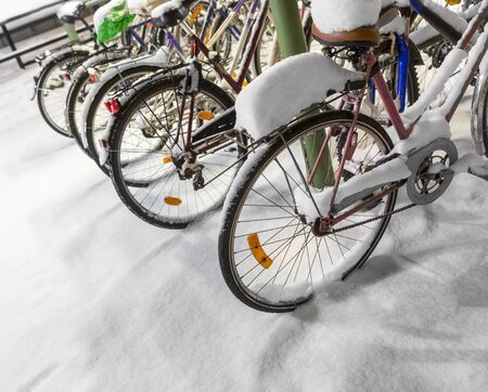Row of bicycles with snow in rack photo