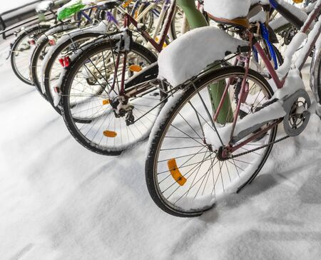 rack wheel: Row of bicycles with snow in rack