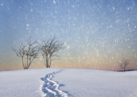 footmark: Bare trees in winter landscape with track of shoes and colorful sky, crisp texture like ice crystals in sky