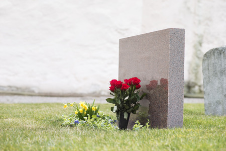 Red roses in grass with reflection in tombstone on graveyard Stock Photo