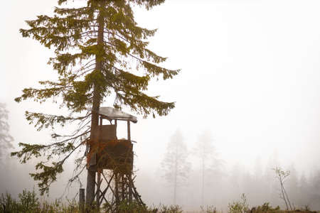 hunting: Shelter built for hunting moose in autumn in clearing of scandinavian forest on foggy day Stock Photo
