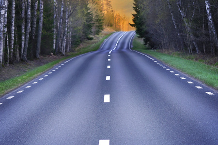Winding rural scandinavian asphalt road with light from evening sun, lined with fresh grass and birch trees with new green leaves in spring
