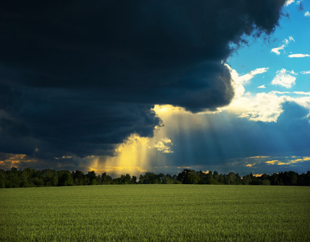 dark skies: Beautiful rural landscape with wheat field and dramatic sky with sunbeams filtered through dark clouds Stock Photo