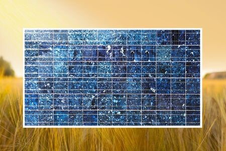sun lit: solar cell with sun lit yellow wheat field in background Stock Photo