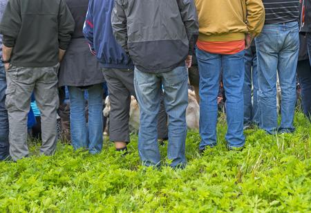 mucha gente: Vista trasera del grupo de personas en ropa casual y perro en campo verde Foto de archivo