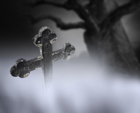 spooky tree: Ancient cross on cemetery in fog with spooky tree in background Stock Photo