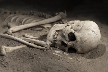 huesos humanos: esqueleto con el cráneo del ser humano en la arena