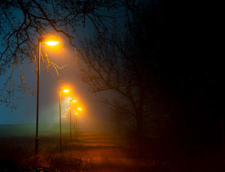 footpath in park area with lamp posts in foggy autumn evening with trees
