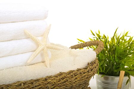 seastar: seastar on fresh washed towels into a straw basket