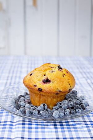 blueberry muffin with fresh blueberries in a clear plate photo